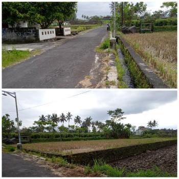 Tanah Sawah Luas 851 Dekat Wisata Jogja Eco Park Kampus UII