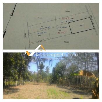 Tanah Sawah Murah Dekat Pasar Jangkang Ngemplak Sleman